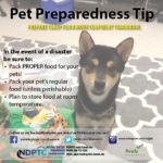 Pet Preparedness Tips