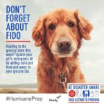 don't forget fido